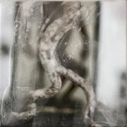 Christine-de-Boom-Für-Inneres-17-2012-Enkaustik-Photographie-auf-Dibond15x15cm