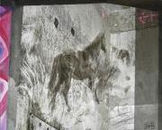 08_Christine-de-Boom_Pferde-verschwinden-einfach_FotografieAcrylLw40x50