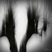 6_Christine-de-Boom_Wesen-L09